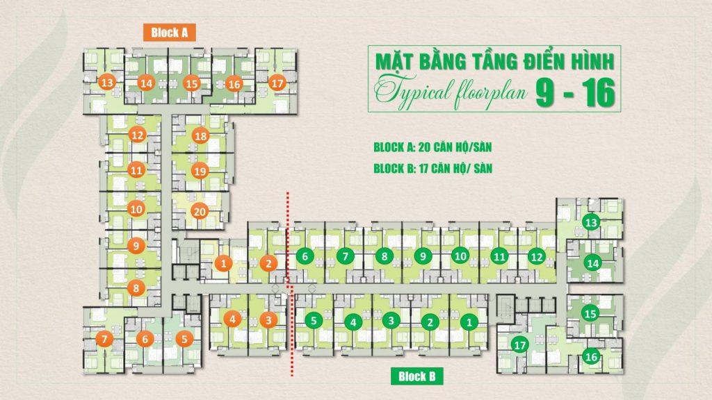 Mặt bằng tầng 9 đến tầng 16 khu căn hộ Ricca